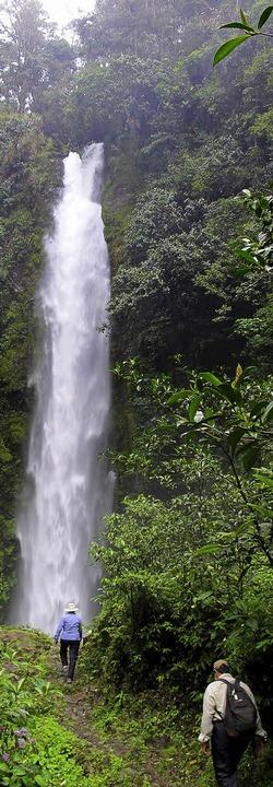 Unberührte Natur: Im Hochland von Papu...en mächtige Wasserfälle in die Tiefe.   | Foto: dpa