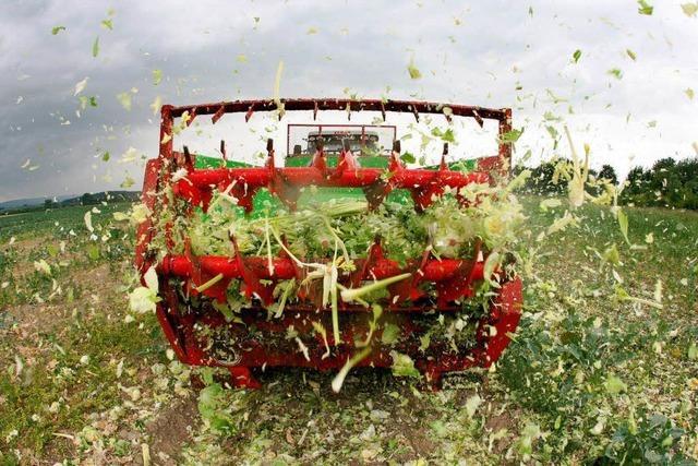 Grün-Rot setzt Zeichen für gentechnikfreie Landwirtschaft
