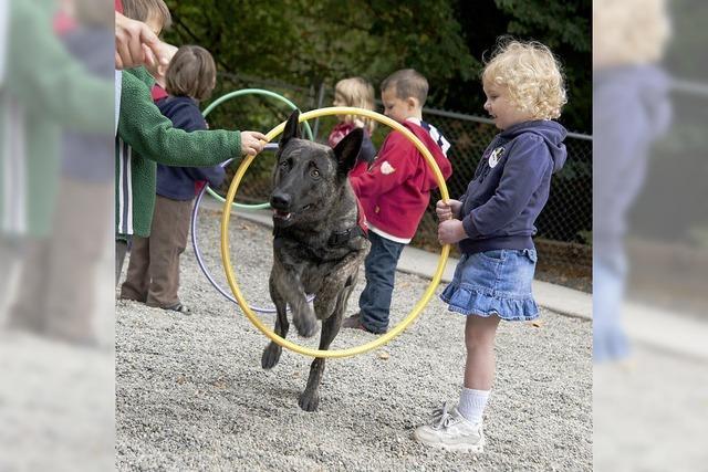 Hunde-Einsatz in Übersee