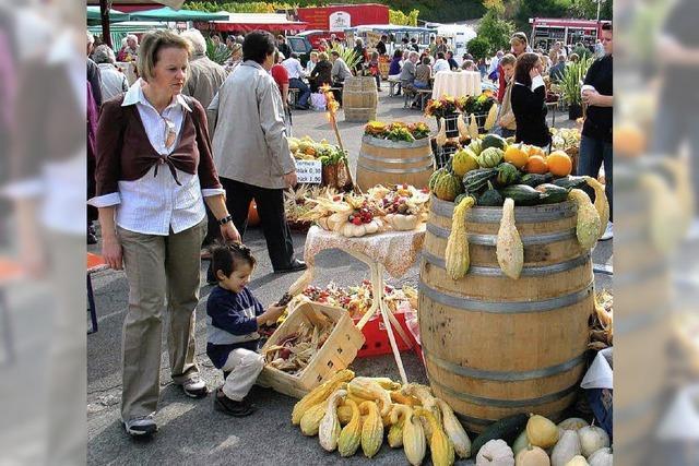 Bauernmarkt im Hof der WG