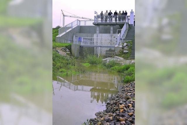 Das Rückhaltebecken im Fernecker Tal in Malterdingen ist funktionsfähig