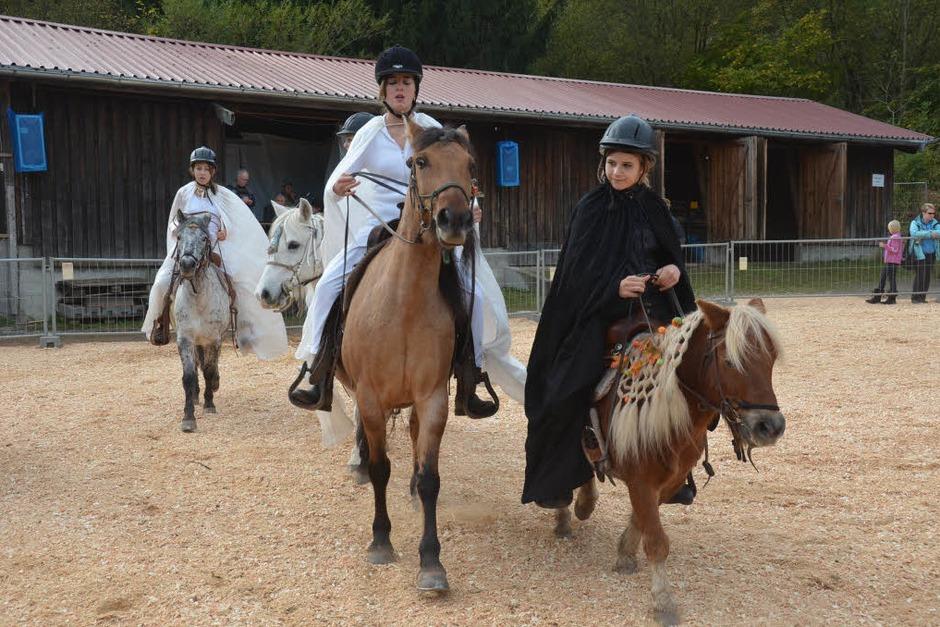 """Die Pony Quadrille """"Gut gegen Böse"""" von sechs Reitschülerinnen der Wieser Grusilochranch war ein echter Hingucker. (Foto: Silke Hartenstein)"""