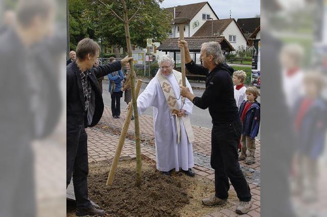 Neuer Baum vor der Kirche