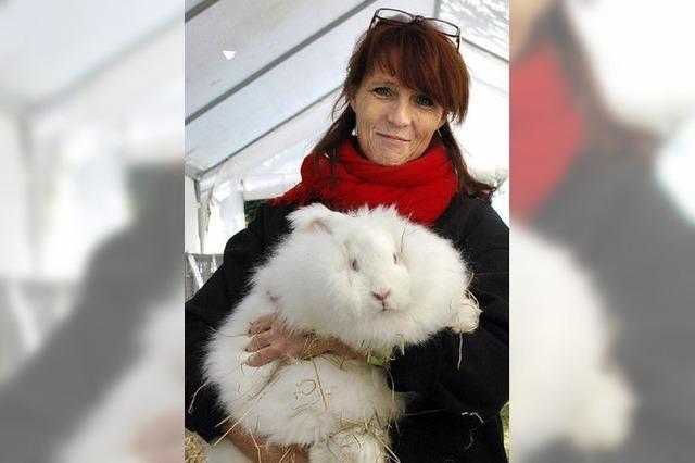 Früher hielt jede Familie Kaninchen