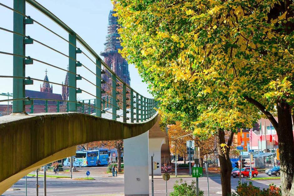 Herbstliche Atmosphäre im Stadtgarten Freiburg (Foto: Carlotta Huber)