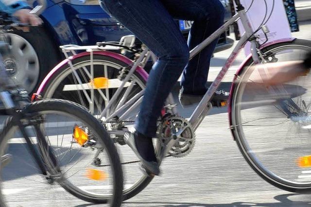 Papp-Fahrrad für sieben Euro