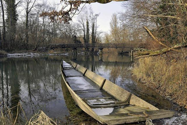 Rust unterstützt Landschaftsprojekt Rheinauenwald