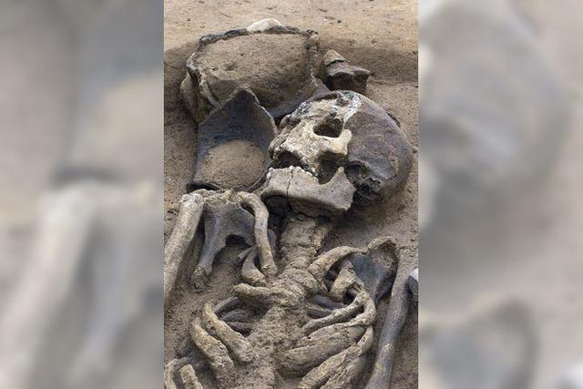 Was Skelette erzählen