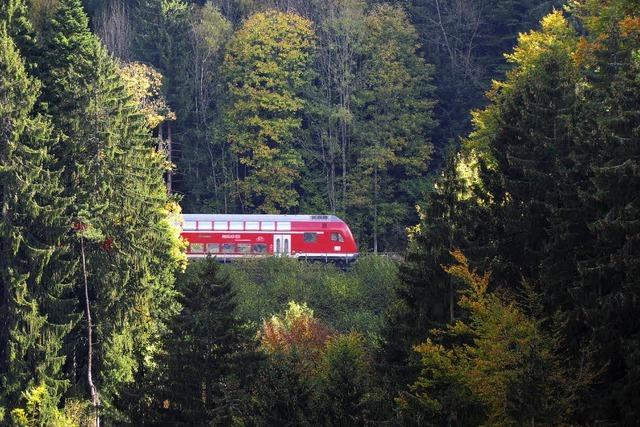 Schwarzwaldbahn-Erlebnispfad: Märklinbahn im Großformat