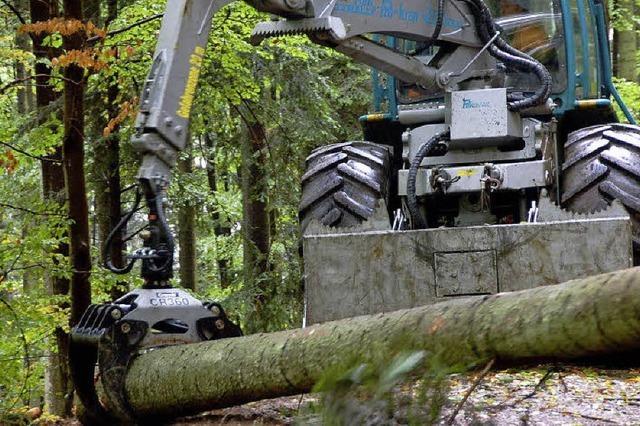 Damit der Waldbesitz sich lohnt
