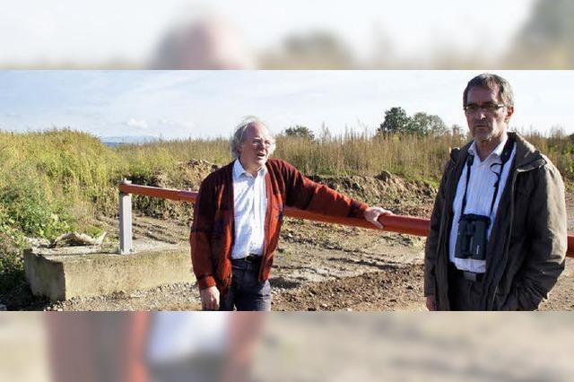 Nabu kritisiert Solarpark-Pläne