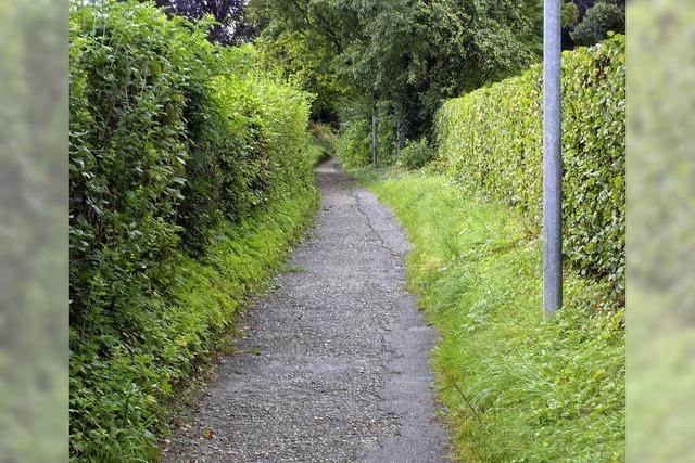 Info-Spaziergang im Kirchweg