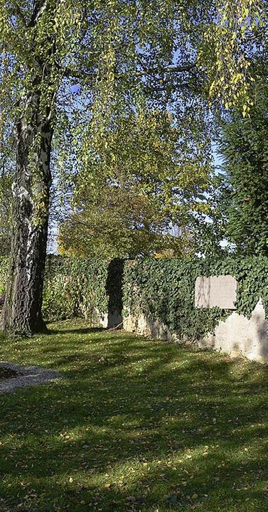 Ein Birke steht in Nähe des Gedenkstei...auer des alten Niederweiler Friedhofs.  | Foto: Babeck-Reinsch