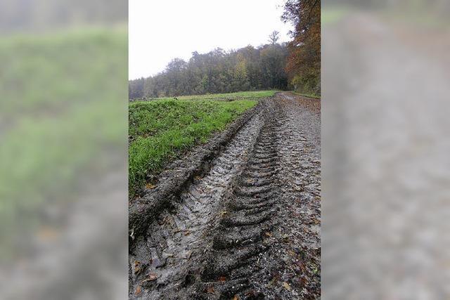 Regen satt – Feldarbeit muss warten