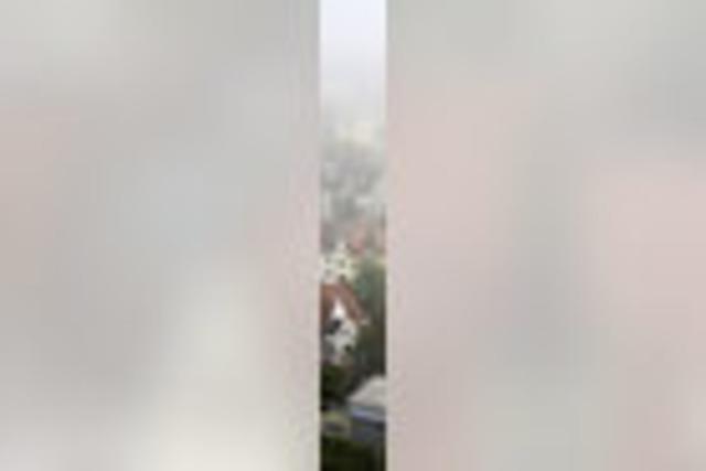 Roter Flitzer trifft grünen Drachen: Langweiliges Freiburg? Nein Danke!