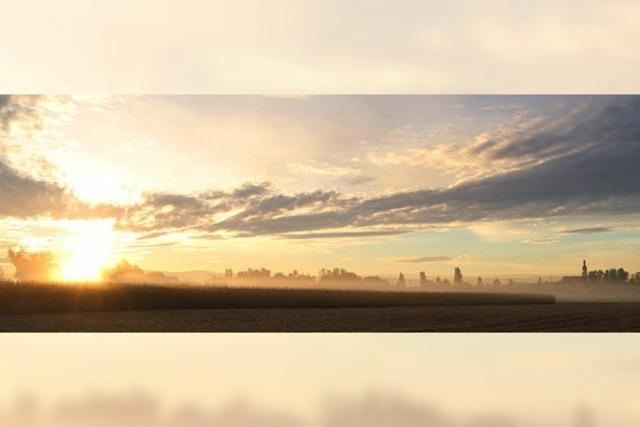 Die Nebel