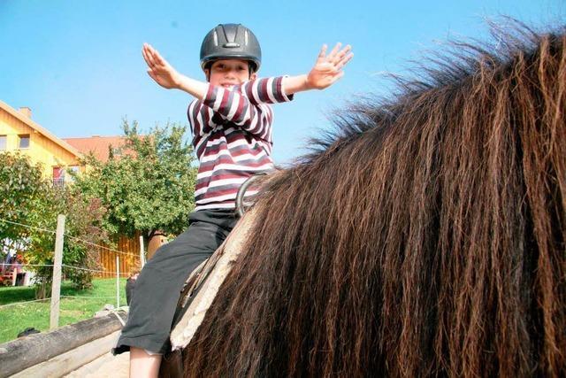 Das Pferd als Ko-Therapeut