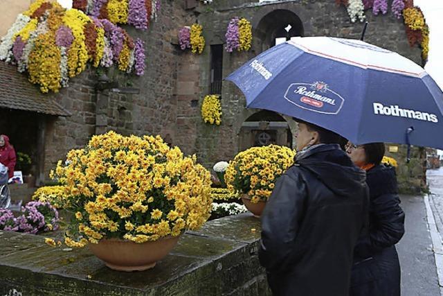 Besucher, Künstler und Blumen trotzen dem Wetter