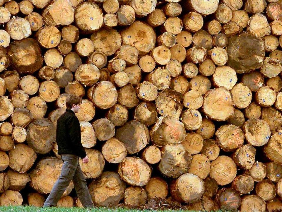 Holz ist knapp, Holz ist teuer –...ofitieren von den hohen Preisen nicht.  | Foto: dpa