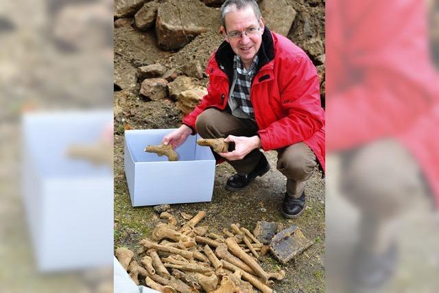 Auf dem Brünnle-Areal wurden Knochen gefunden