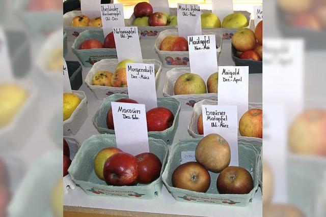 Wo Äpfel und Birnen verglichen werden