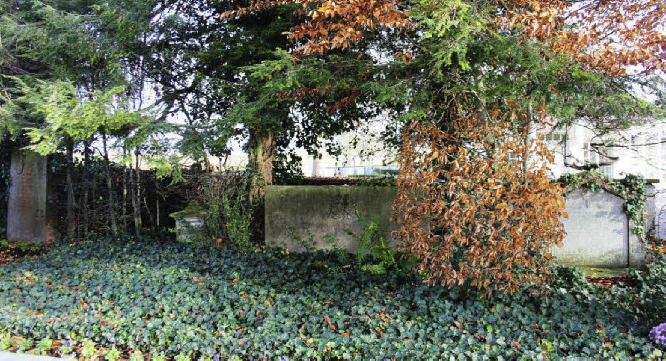 Am Rand des alten  Neuershauser Friedh...en Grundherrenfamilie von Bieberstein.  | Foto: horst david
