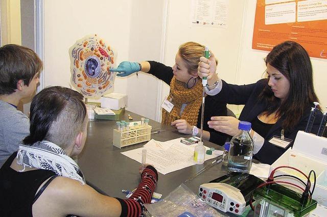 Schüler isolieren DNA