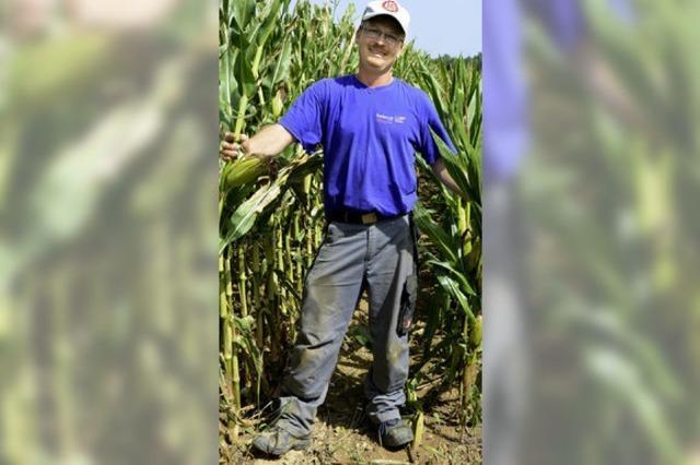 Maisbauern ziehen an einem Strang
