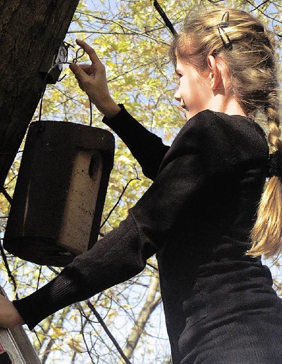 Cornelia Nagel hängt den Nistkasten auf.    Foto: privat