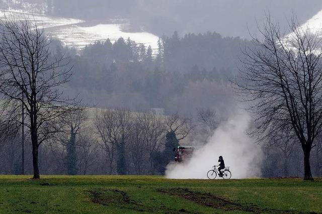 Bild mit Radfahrer macht das Rennen