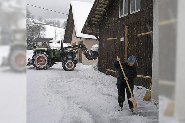 Buslinien wurden Opfer der winterlichen Verhältnisse