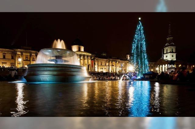 Londons berühmtester Weihnachtsbaum: Ein Geschenk aus Norwegen