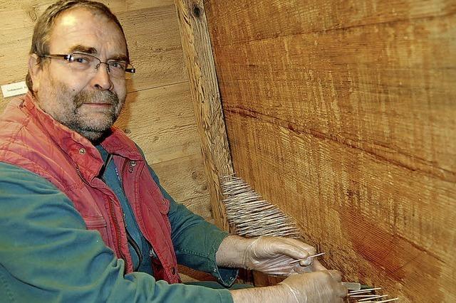 Kampf gegen den Holzwurm