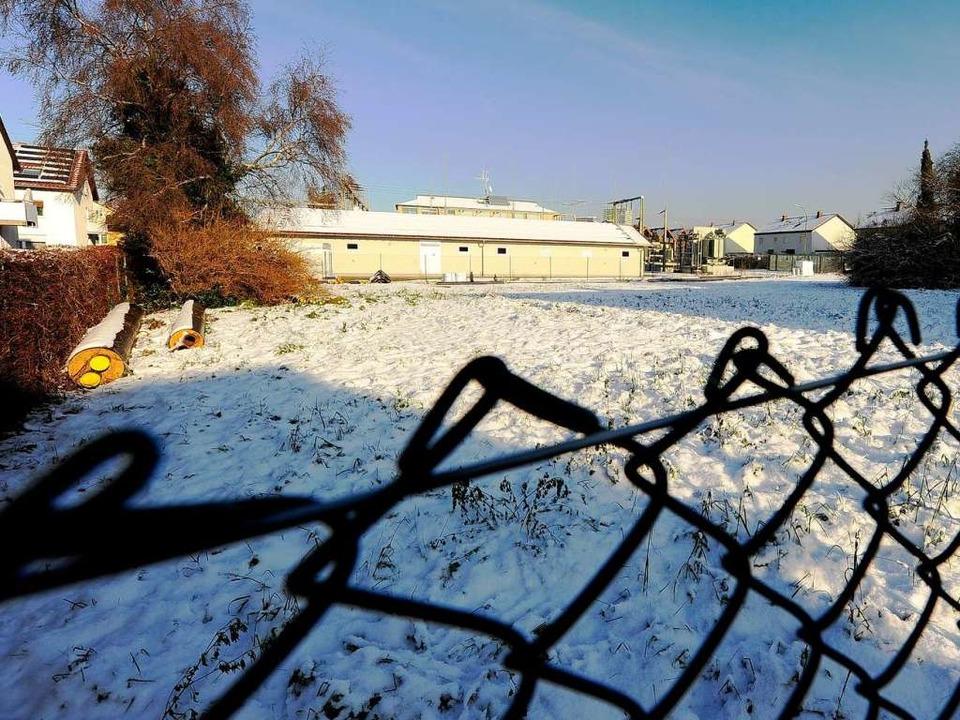 Ein möglicher Standort für ein neues A...annwerk von Badenova in Haslach-Haid.     Foto: Ingo Schneider