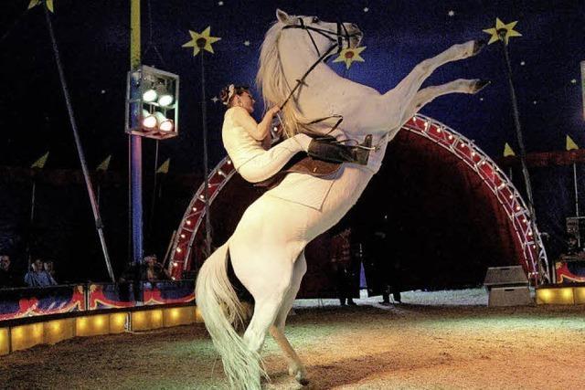 Verlosung: Waldshut-Tiengener Weihnachtszirkus Luna