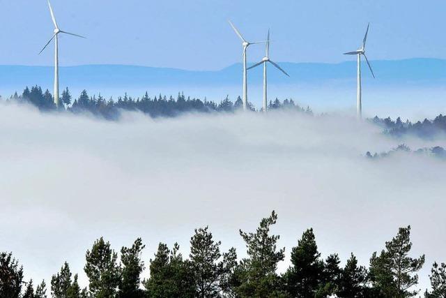 Badenova und BUND wollen bis zu 80 Windräder in Südbaden errichten