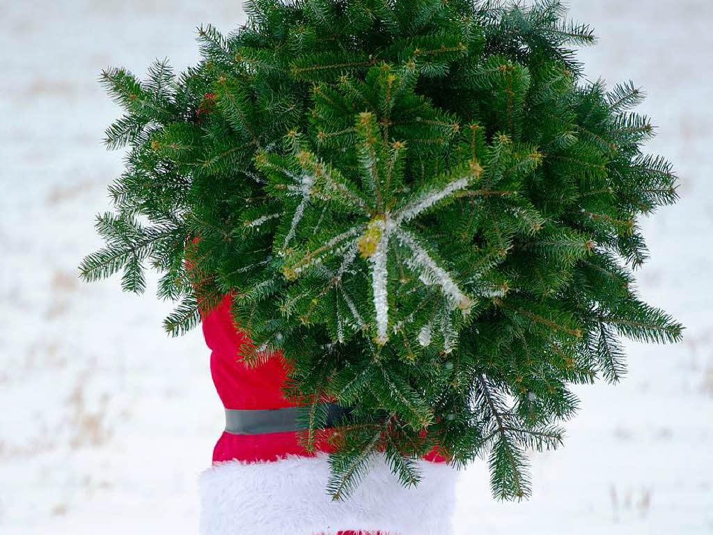 gibt es den umweltfreundlichen weihnachtsbaum freiburg. Black Bedroom Furniture Sets. Home Design Ideas