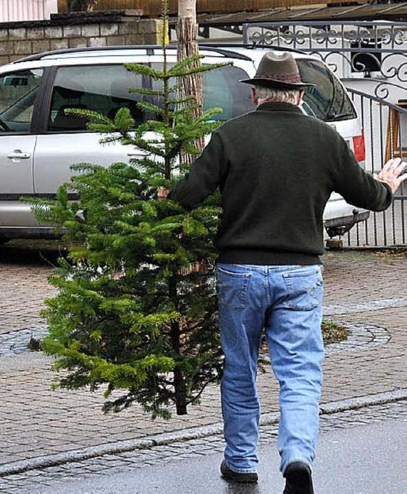 Am Schopf gepackt wurde  dieser Baum, ...önen Weihnachtsbaum geziert zu werden.  | Foto: Julius Wilhelm Steckmeister