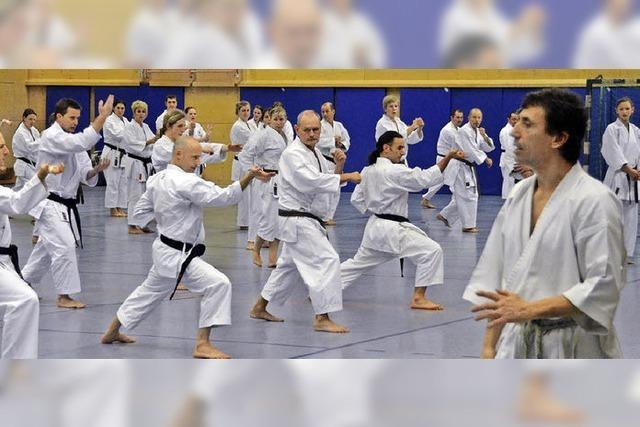 Karate mit Karamitsos