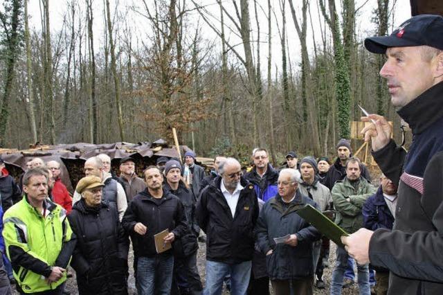 Der Bürger als Waldarbeiter