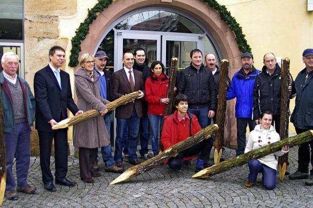 Holz vom Kaiserstuhl für Bergbauern