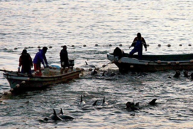 Fukushima Fischers haben Angst statt Hoffnung