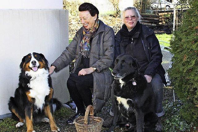 Weg mit dem Hundedreck