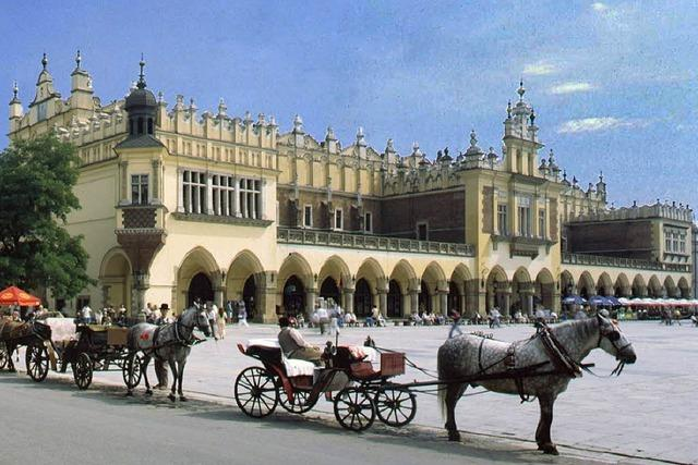Politische Studienreise nach Warschau und Krakau