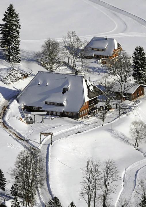 Schwarzwald von seiner besten Winterseite  | Foto: dpa