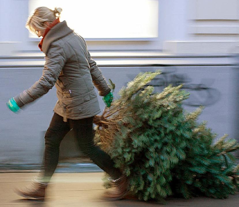 Den Weihnachtsbaum muss man nicht selb...sorgen – das übernimmt das DRK.     Foto: F.Gentsch /dpa