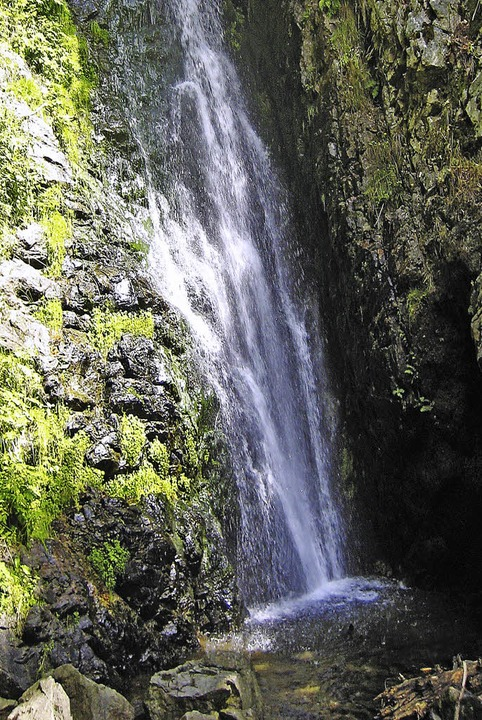 Der Todtnauer Wasserfall ist mit 97 Me...chste Naturwasserfall in Deutschland.     Foto: Bergwelt