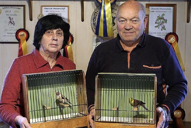 Zu Meistervögeln gekürt