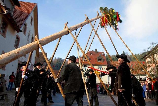 Fotos: Narrenbaumstellen in Elzach