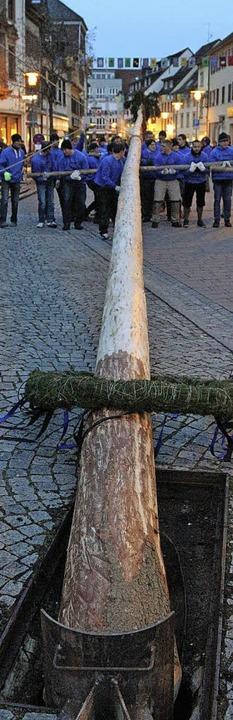 Der Narrenbaum ist stolze 30 Meter und sechs Zentimeter groß.  | Foto: Hans-Jürgen Hege